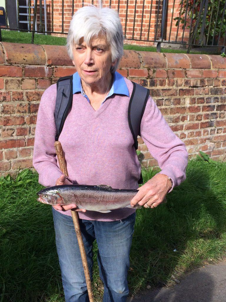 belton-fish