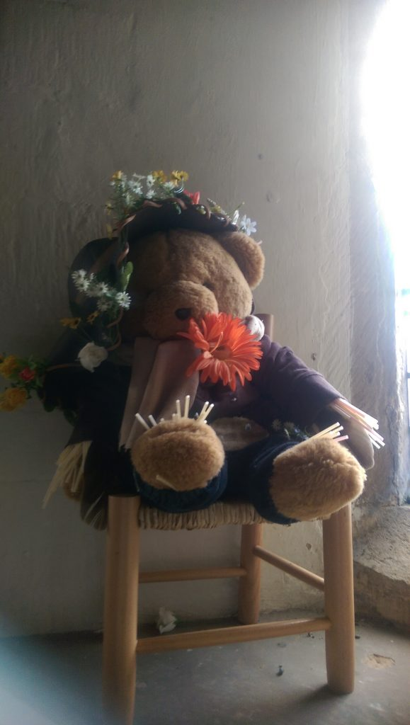 harvest-festival-teddy-bear