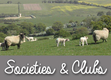 clubs-and-socities